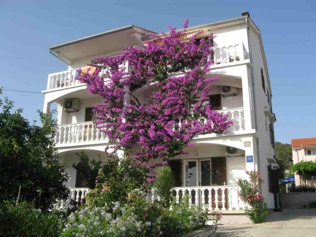 Chorvatsko prázdninové apartmánové domy
